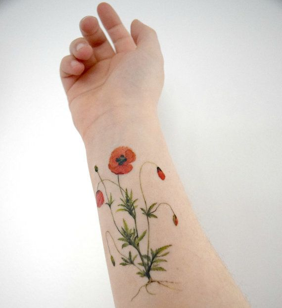 Poppy Flower Tattoo Meaning: Poppy Dot Line Work Tattoo - Google Keresés