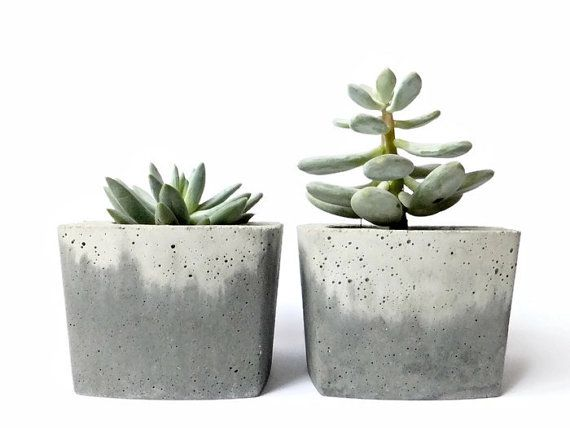 Concrete pot for succulent cactus grey urban industrial Cactus pots for sale