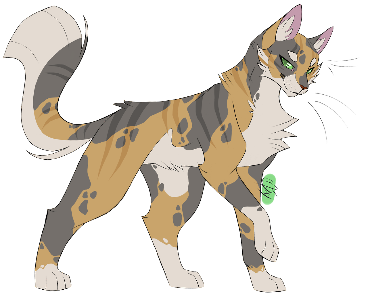 Warrior Cats Dessin Chat Chats Et Chatons Animaux