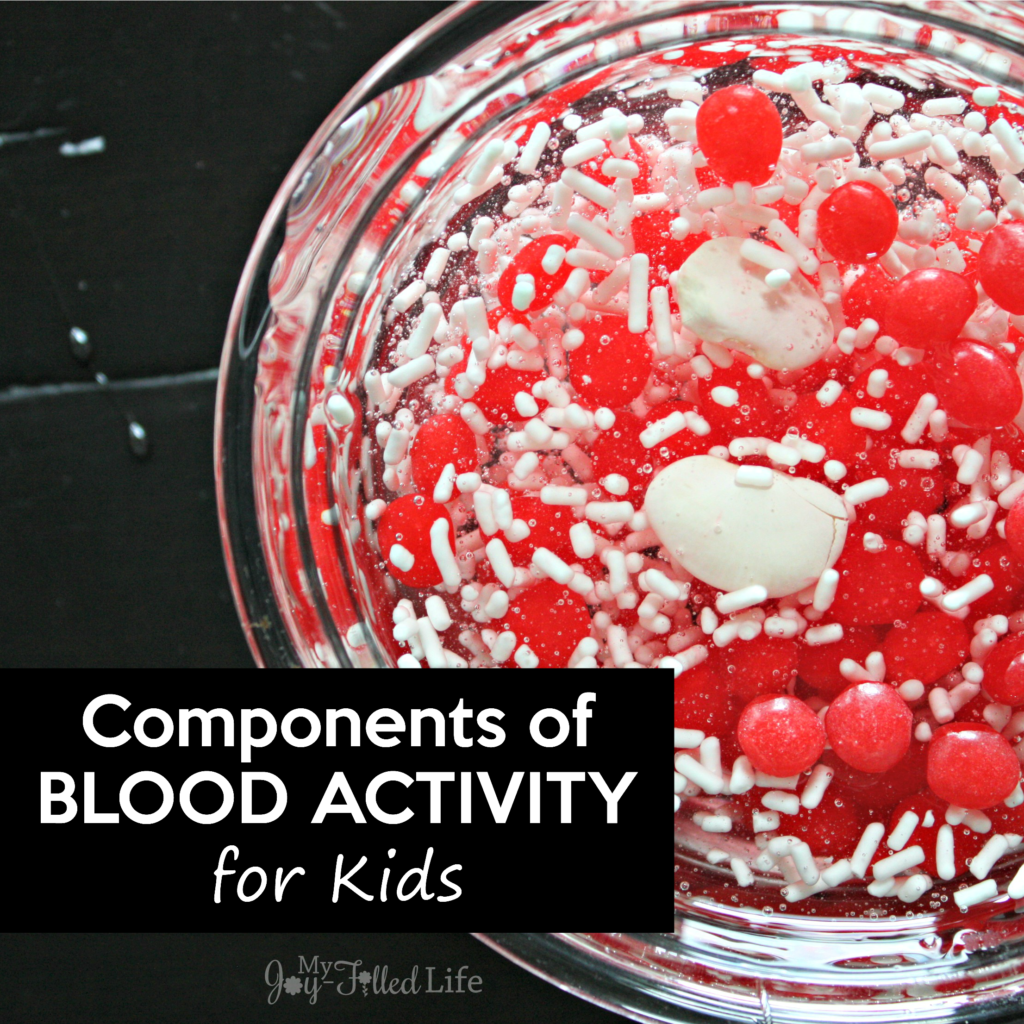 Make A Blood Model In A Bottle