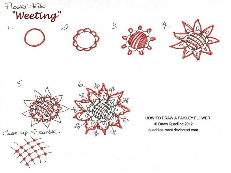 How To Draw Paisley Flower 26 Weeting By Quaddles-Roost