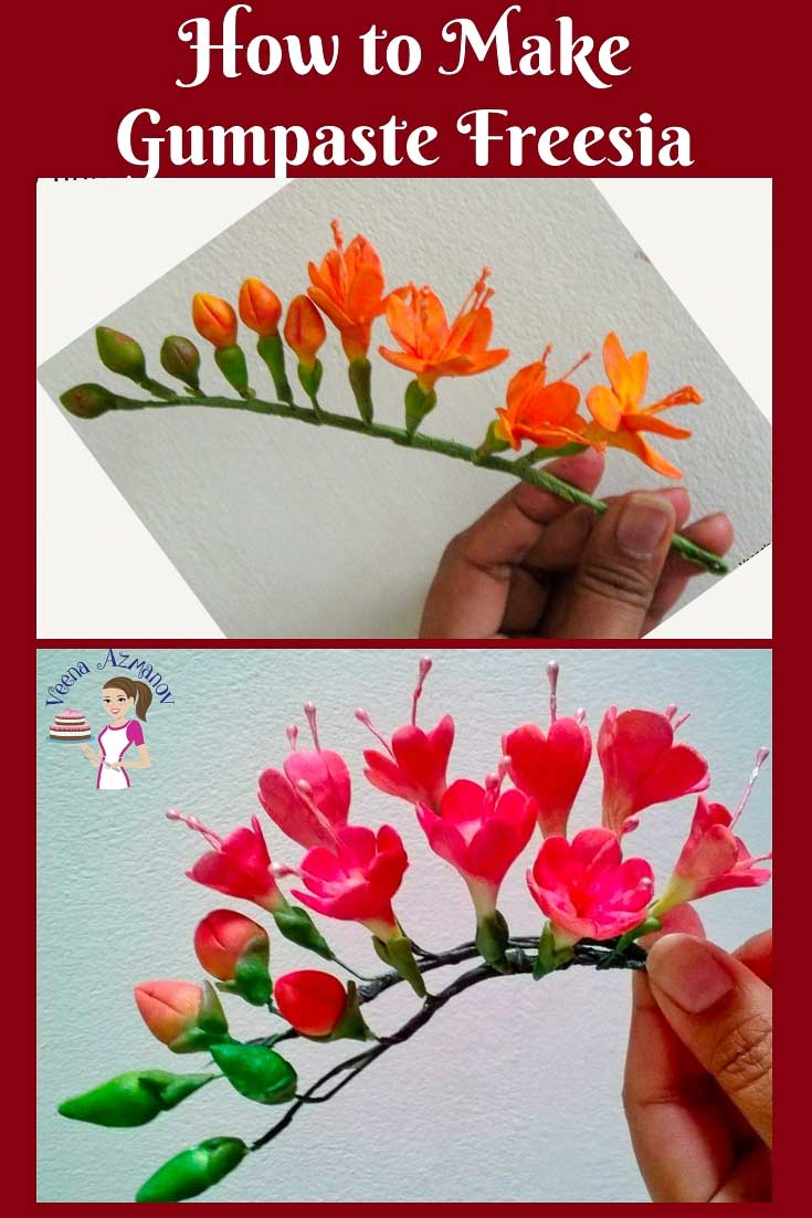 The Gumpaste Freesia Is An Absolutely Gorgeous Sugar Flower When Created Into A Spra Gum Paste Flowers Tutorials Sugar Flowers Tutorial Fondant Flower Tutorial