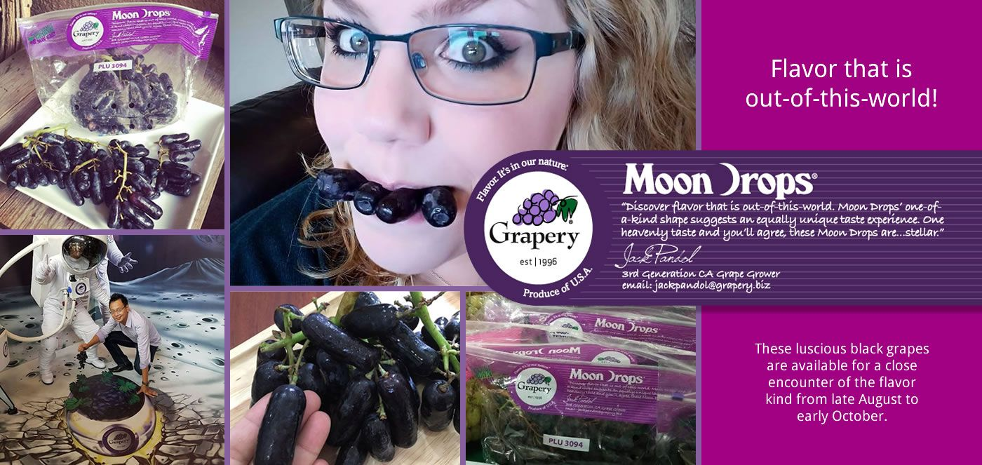 Grapery table grapes with images grapes flavors