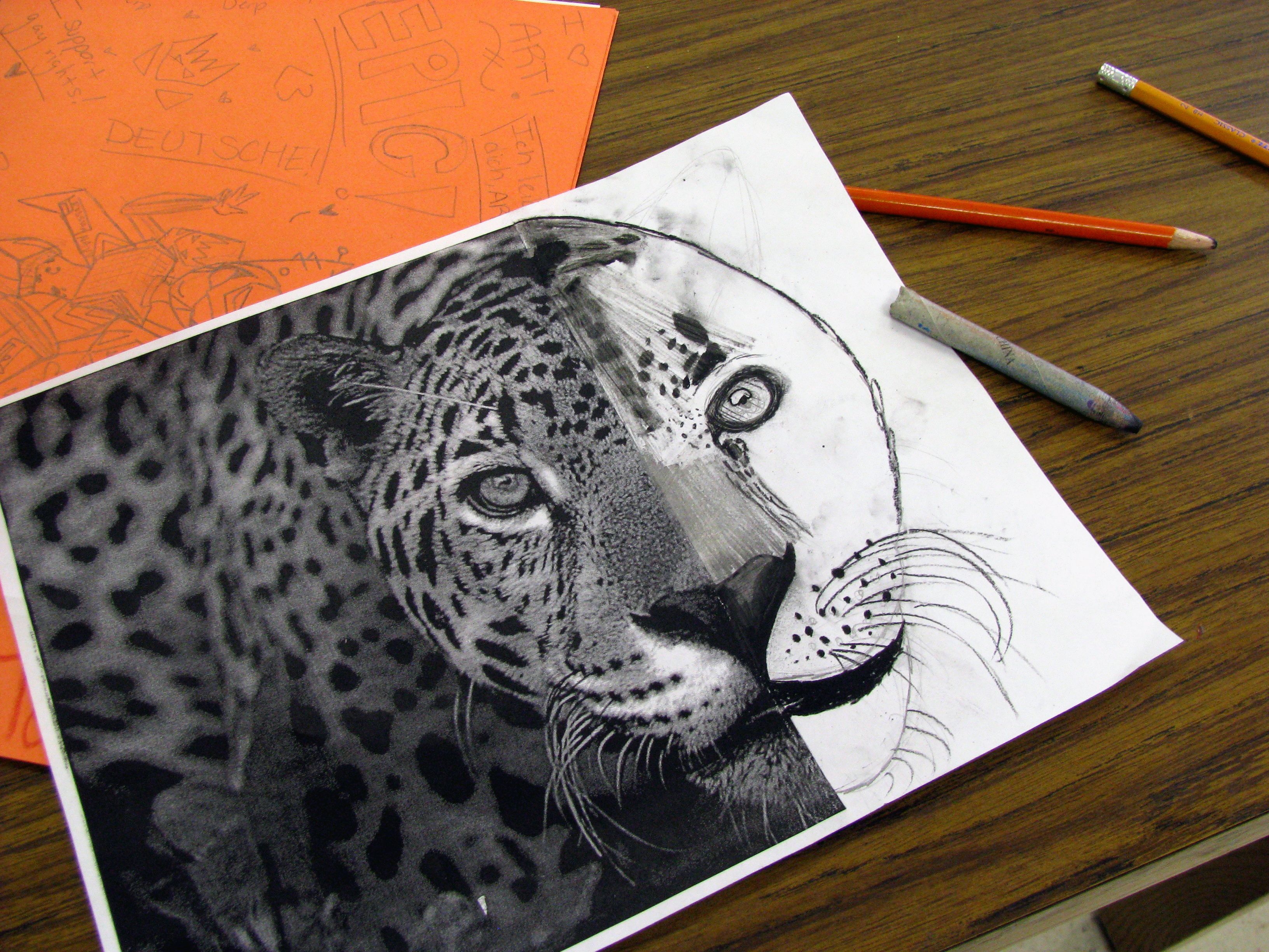 Complete The Animal Charcoal Drawing