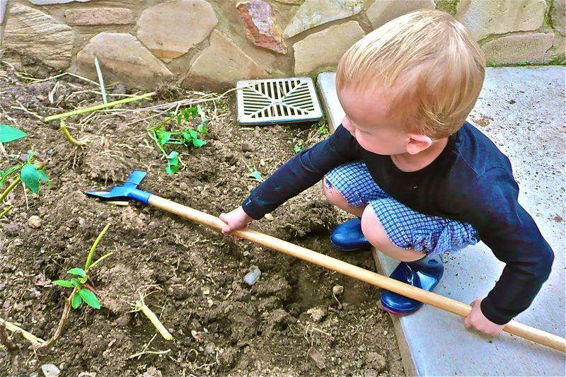 Montessori Inspired Gardening Unit