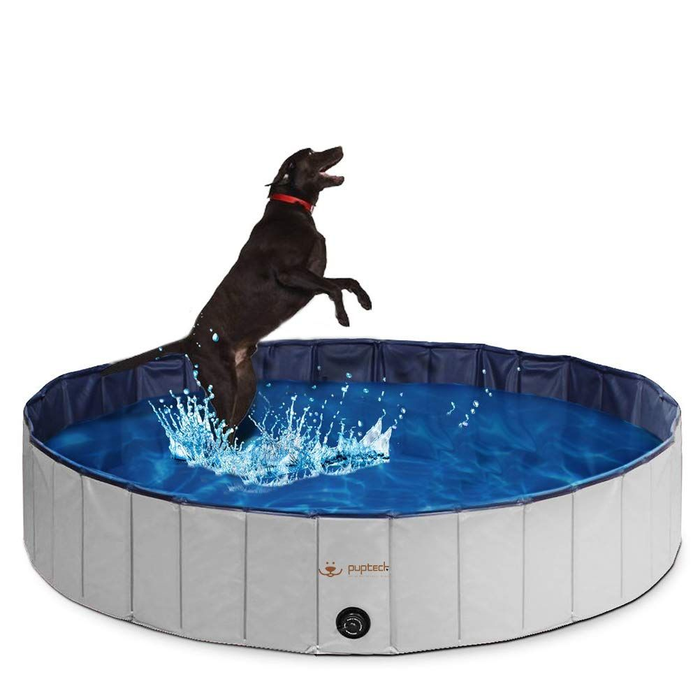 Pupteck Foldable Dog Swimming Pool Review Dog Training Advice Tips Dog Swimming Pools Dog Pool Dog Tub