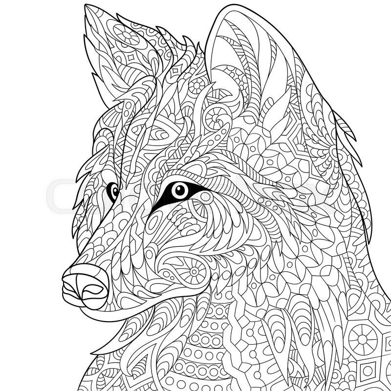 Stock vector of u0027Zentangle stylized cartoon wolf, isolated on white - fresh realistic rhino coloring pages