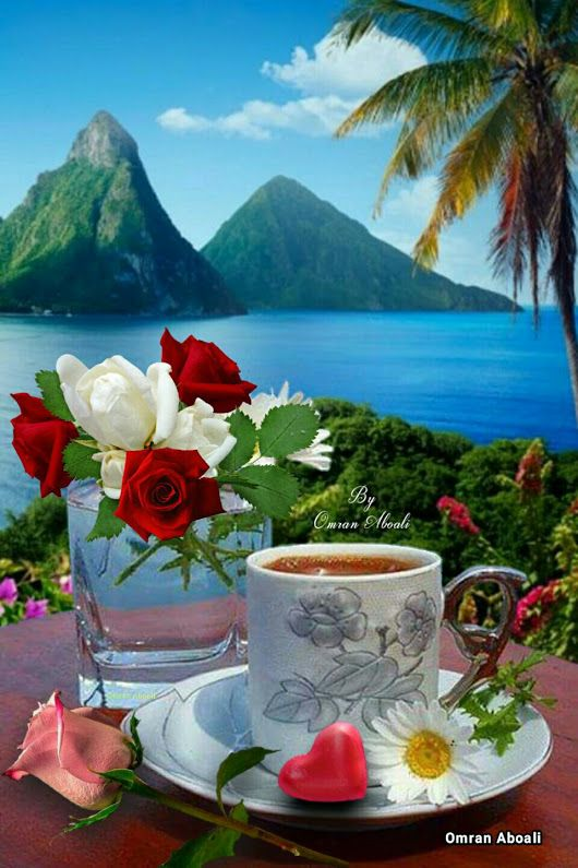 Roses And Coffee With A Beautiful View Of The Sea Flowers Sea Roses Coffee Good Morning Coffee Good Morning Flowers Morning Coffee Photography