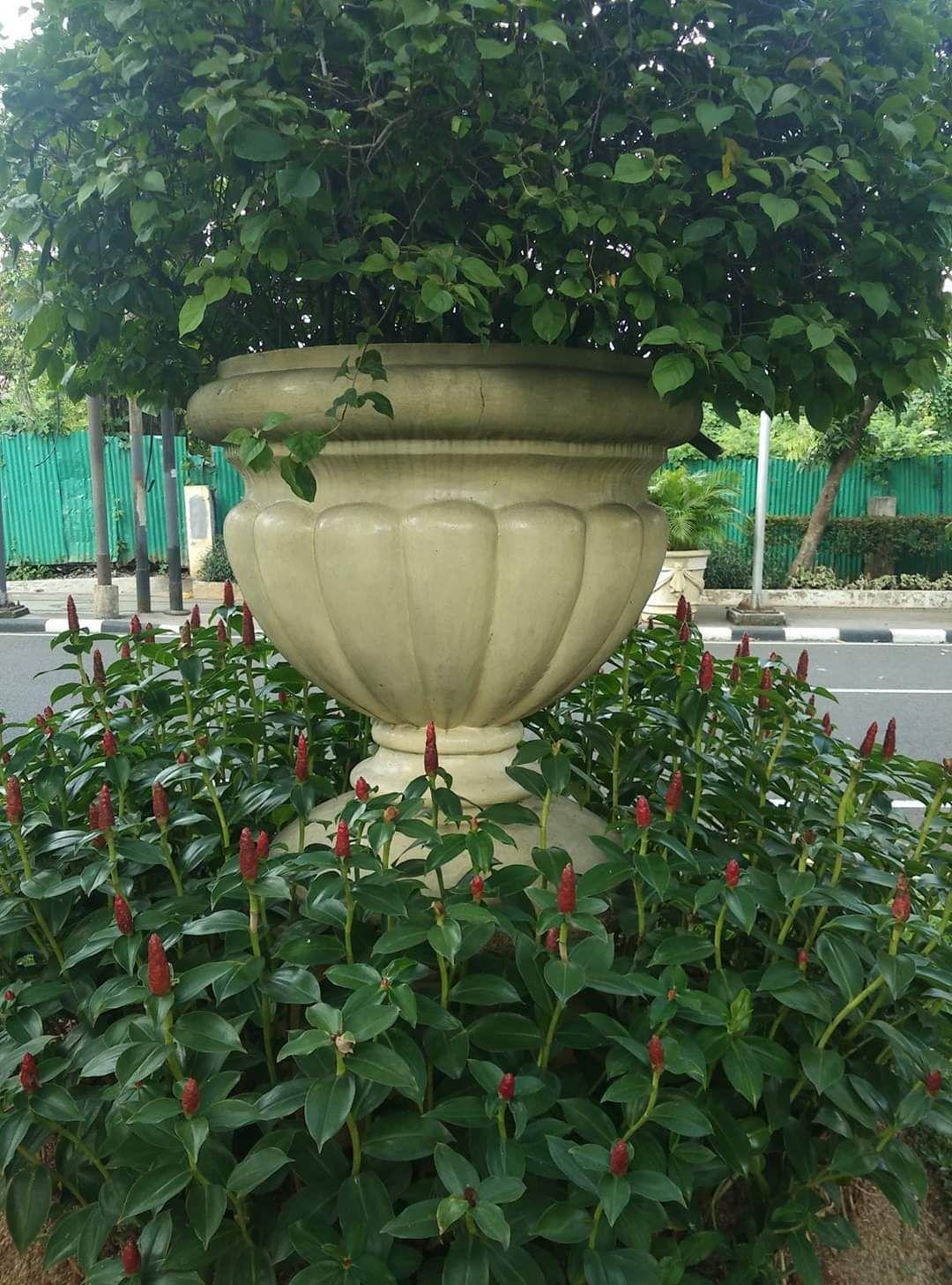 Pot Piala Labu Besar Pot Bunga Bunga