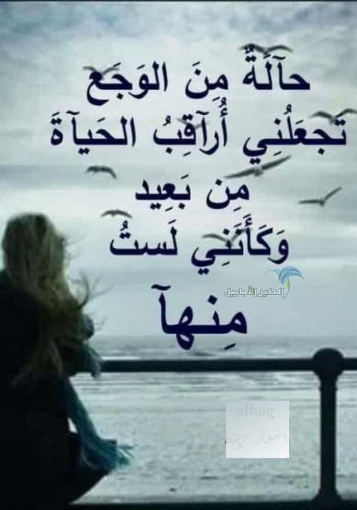 صور حزينة جدا اروع 120 صورة مؤلمة ستجعلك تبكي بدل الدموع دم الطير الأبابيل Movie Quotes Funny Photo Quotes Arabic Quotes