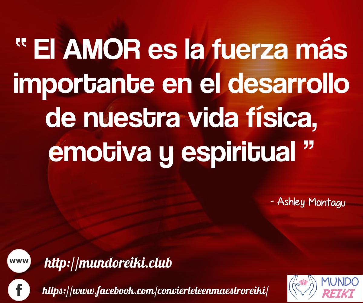 La Fuerza Del Amor Frases Amor Reflexiones Pensamientos Frases