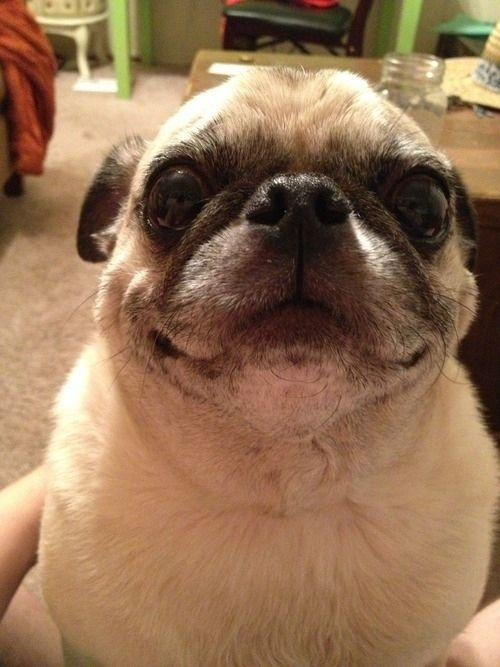 """Oh, it's OK if you don't know what you're doing with your life yet. You'll figure it out!"" 