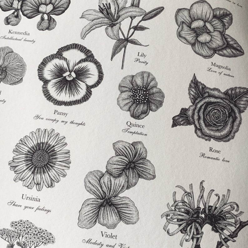 Victorian Language Of Flowers Print A To Z Of Flowers Etsy Language Of Flowers Victorian Flowers Flower Alphabet