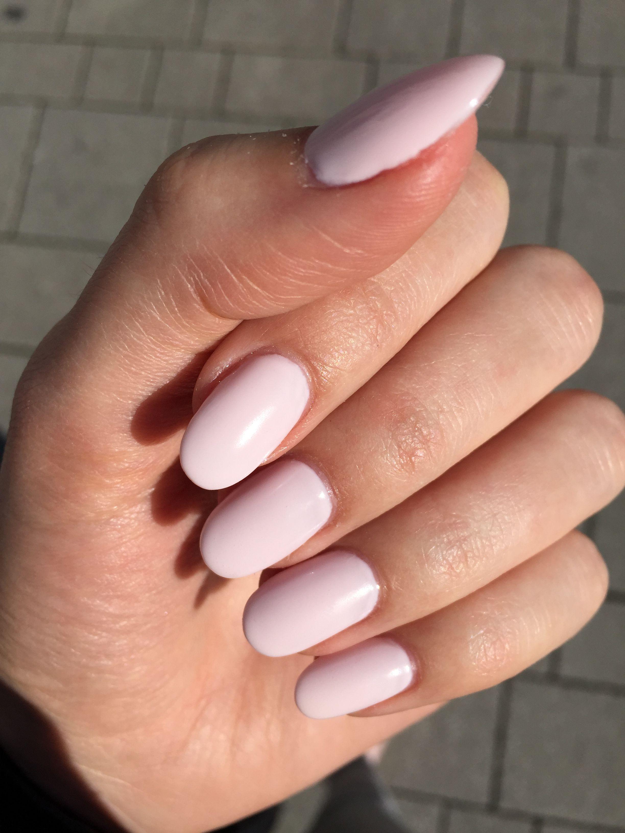 Nails Rose Nails Light Pink Short Nails Round Whitepink Pink Nail Colors Rose Nails Pink Nails