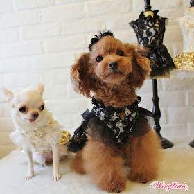 WOOFLINK - Hip designer dog clothes: ♥ PARTY GIRL ♥