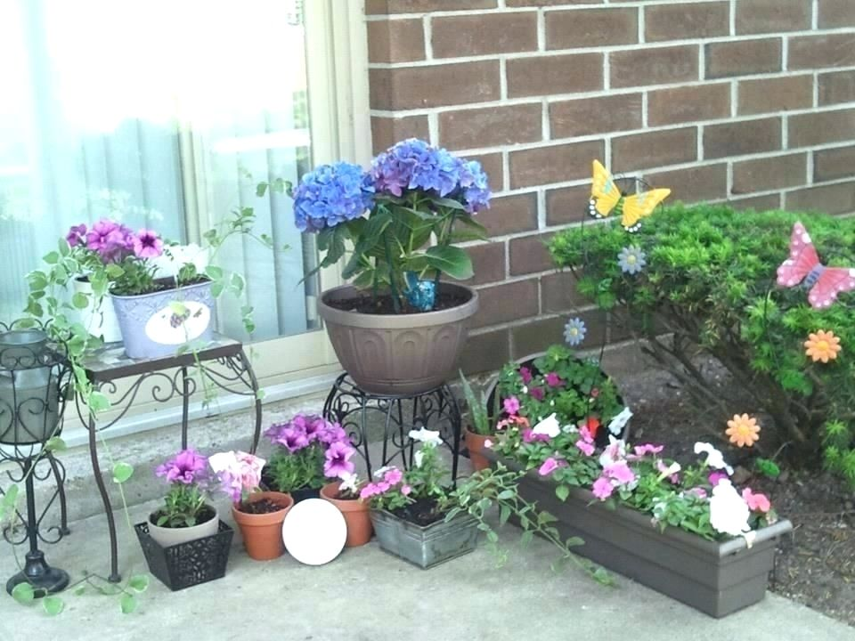 What Do I Need To Start A Vegetable Garden # ...