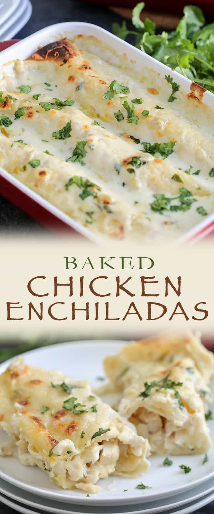 Creamy Chicken Enchiliadas Creamy Chicken Enchiladas Recipe Best Chicken Enchilada Recipe Chicken Enchilada Recipe