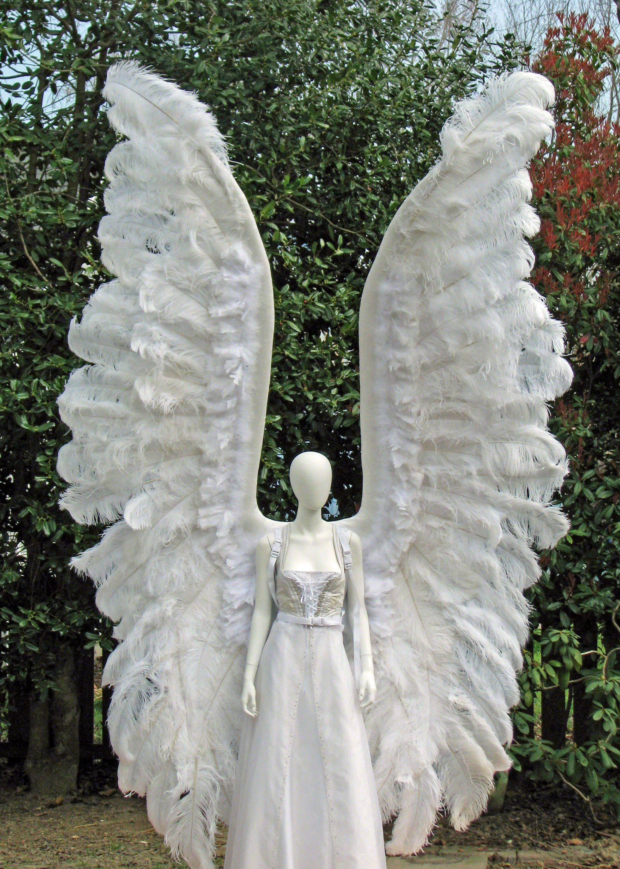 angel wings - Halloween Costumes Angel Wings
