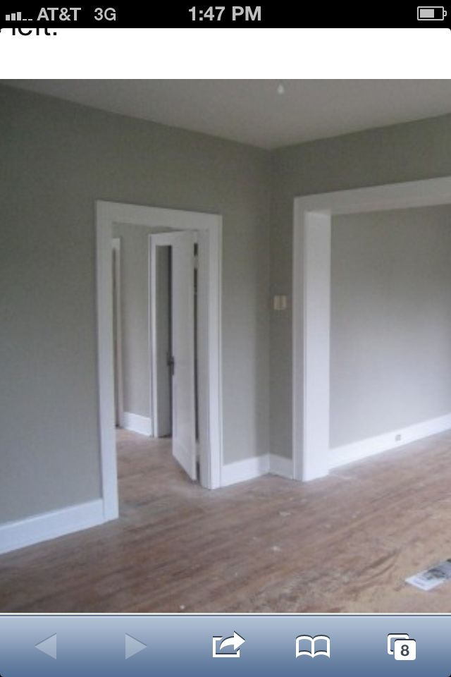 Sw Mindful Gray Just Painted Our House This Color I Love It Inside Too