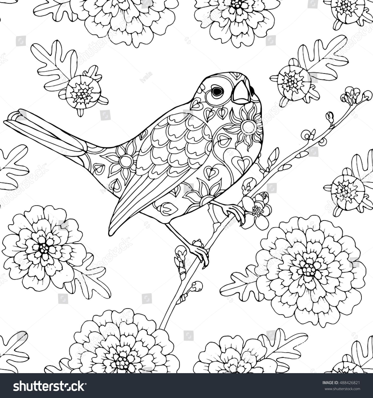 nightingale animal coloring pages. Singing bird  patterned nightingale with marigold flowers seamless pattern page for adult colouring book buy this stock vector on Shutterstock find singing