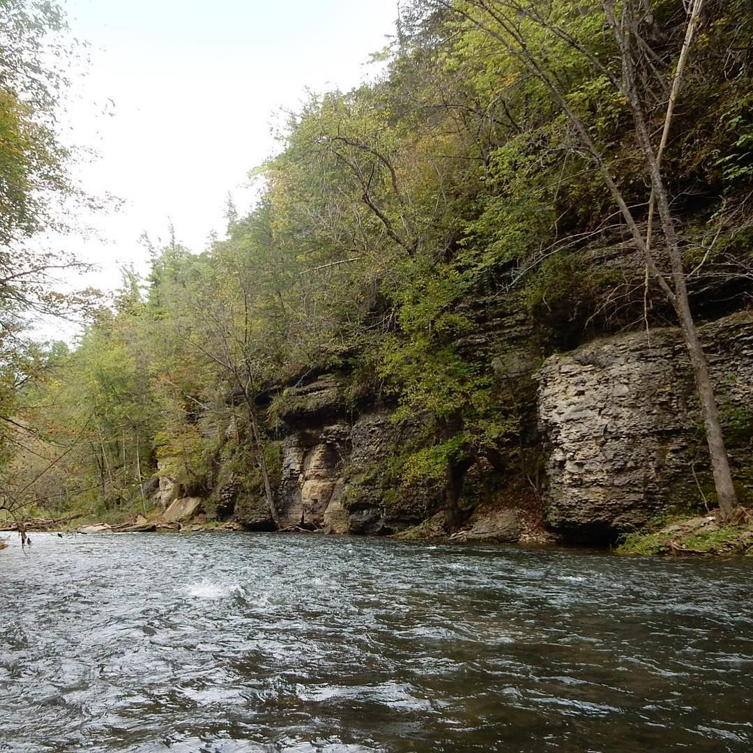 The 7 Best Fly Fishing Spots In Minnesota Fly Fishing Fish Bass Fishing Tips