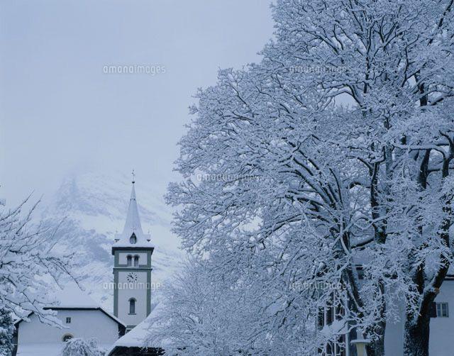 樹氷と教会 グリンデルワルト スイス[01756054986]  写真素材・ストックフォト・イラスト素材 アマナイメージズ