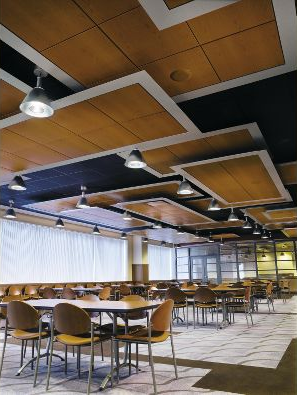 Suspended Wood Panel Ceiling Idea Armstrong Ceiling