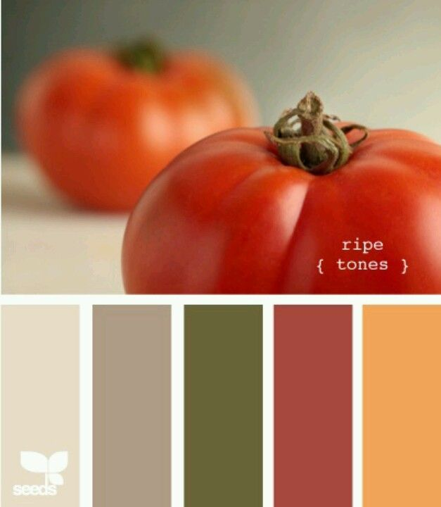 Color pallet. Would be lovely for a kitchen