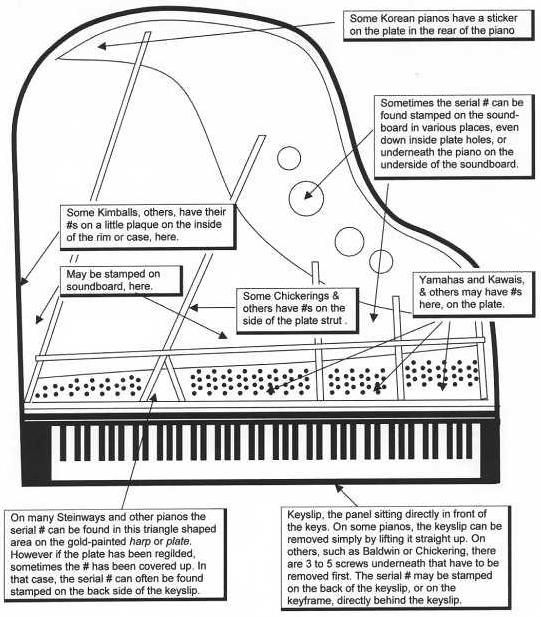 piano body diagram - Google Search | piano project | Pinterest ...