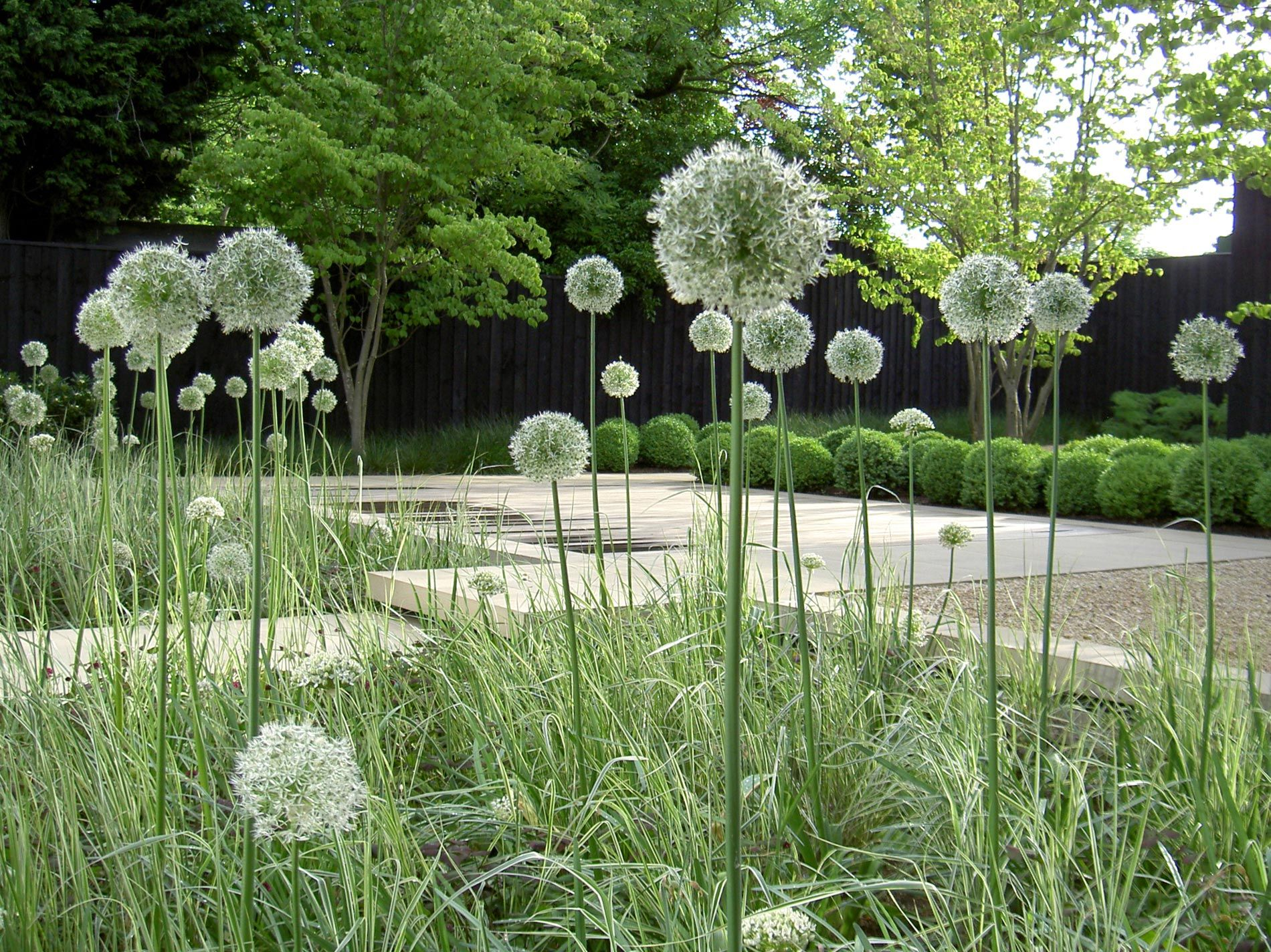 London, Grasses and Colour palettes on Pinterest