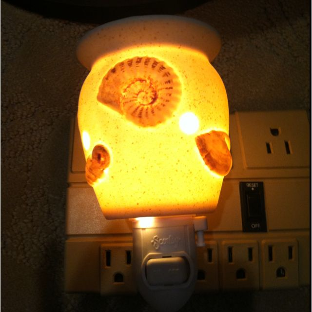 Seashells Plug In Scentsy Warmer Scentsy Wickless Candle