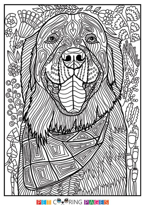 Free printable Golden Retriever coloring page \