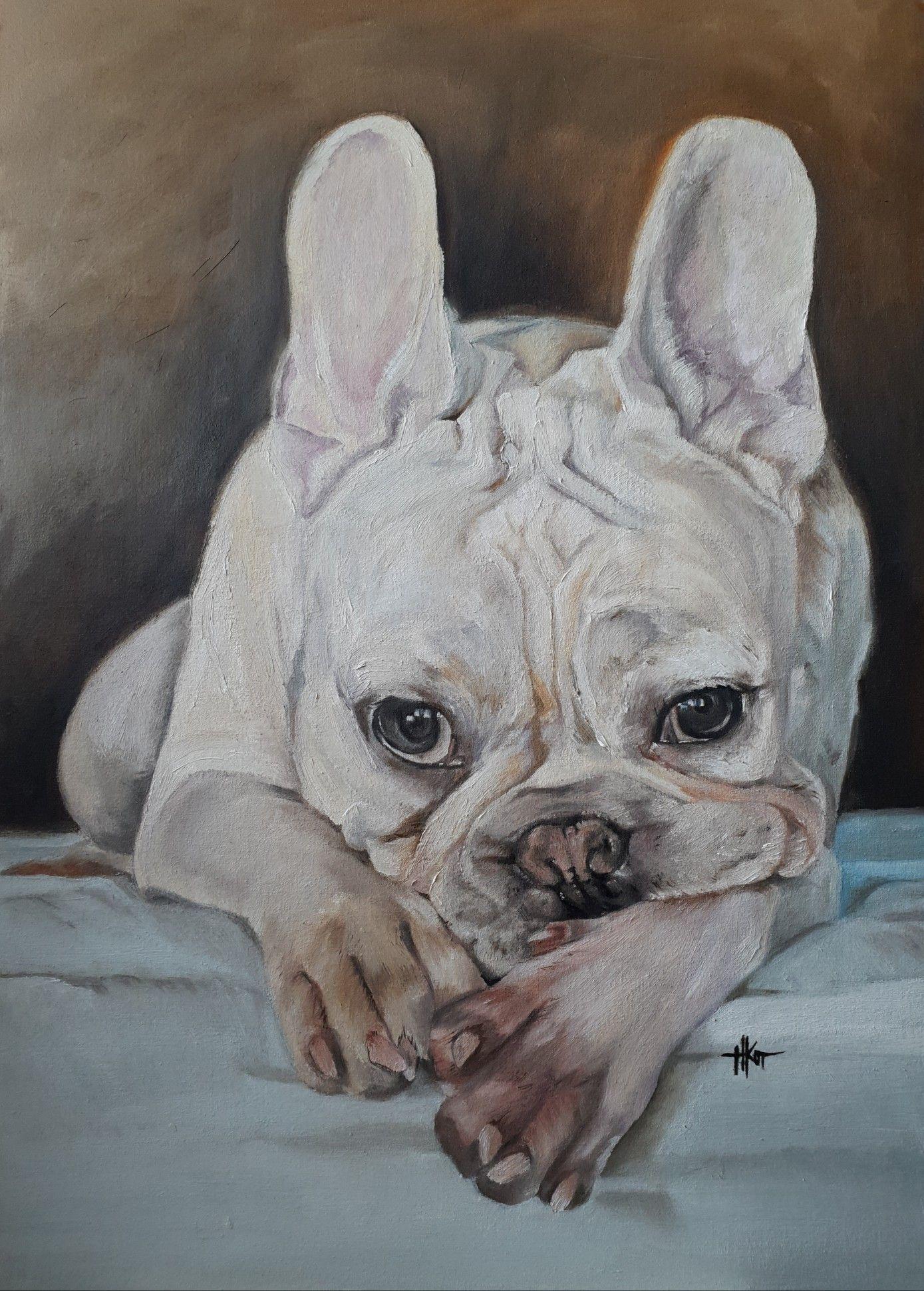 Lock Jaw. French bulldog. Dogs Oil portrait on board 50x70