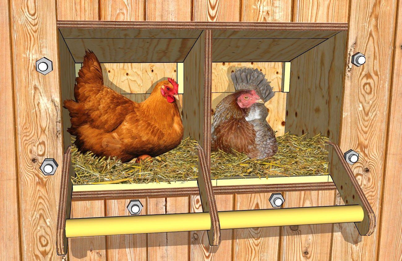 construire des pondoirs nichoirs pour poules plans poulailler bio jardinage pinterest. Black Bedroom Furniture Sets. Home Design Ideas