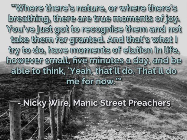 Quote from Nicky Wire of the Manics