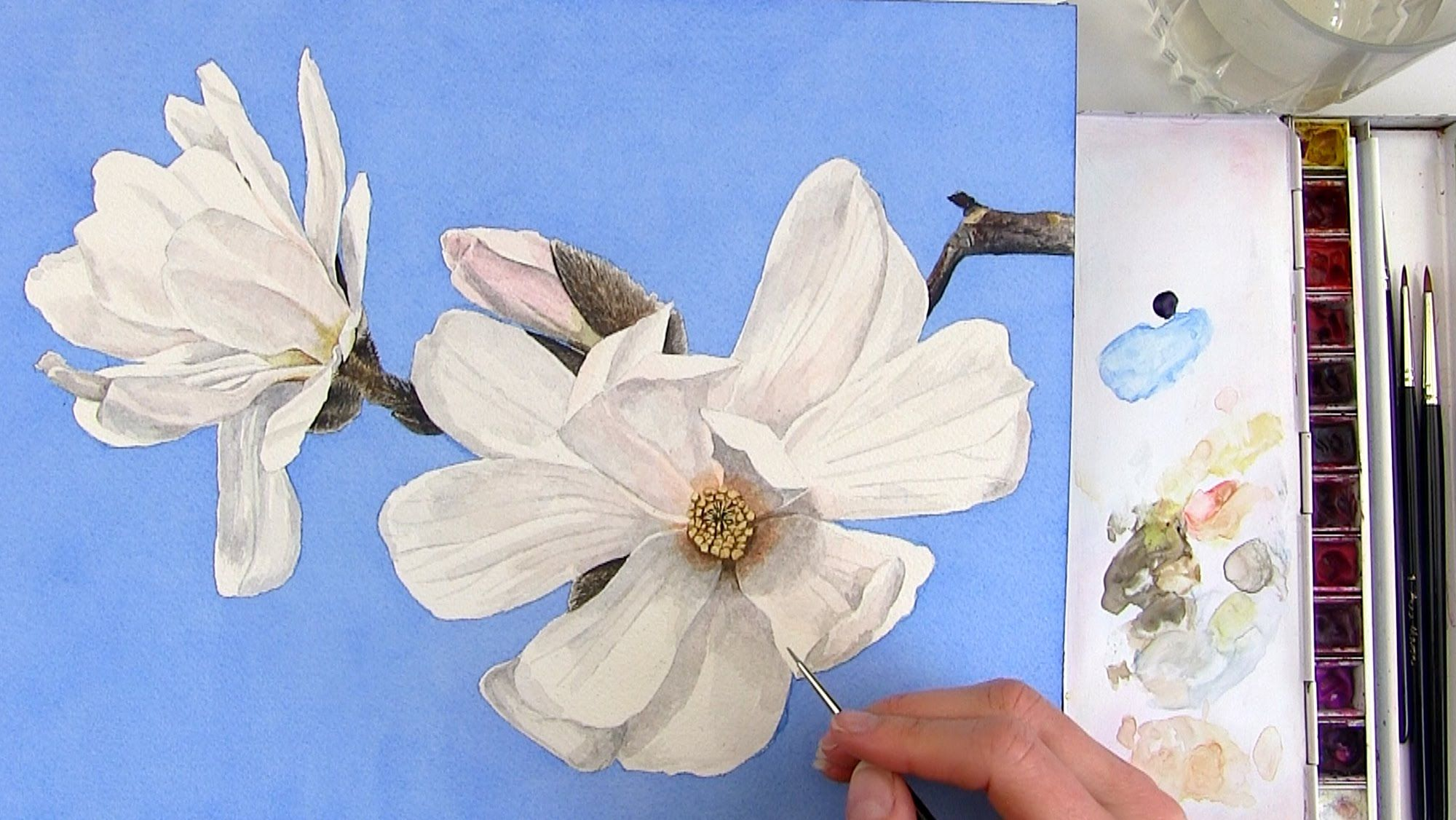 How To Paint A Realistic White Magnolia Flower In Watercolor