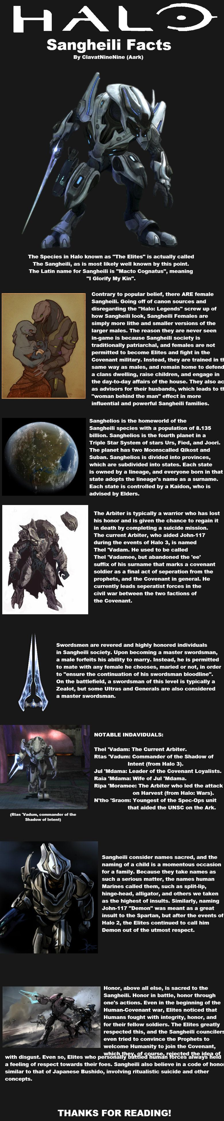 HALO: Sangheili Facts // funny pictures - funny photos