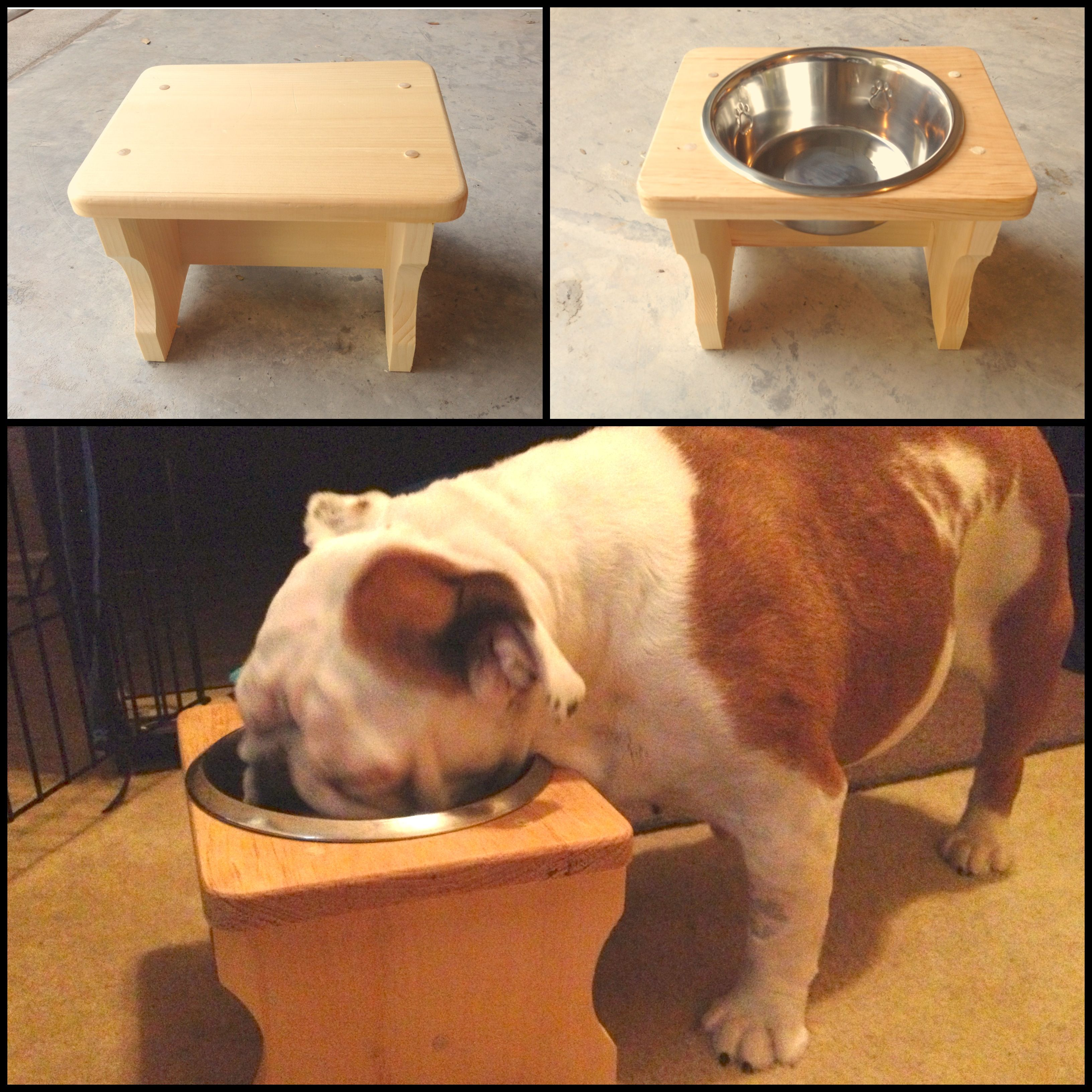 how to build a dog breeding stand