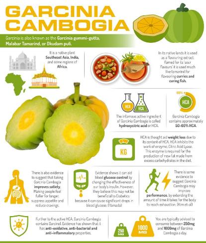 Pure Garcinia Cambogia Garcinia Cambogia Benefits Garcinia