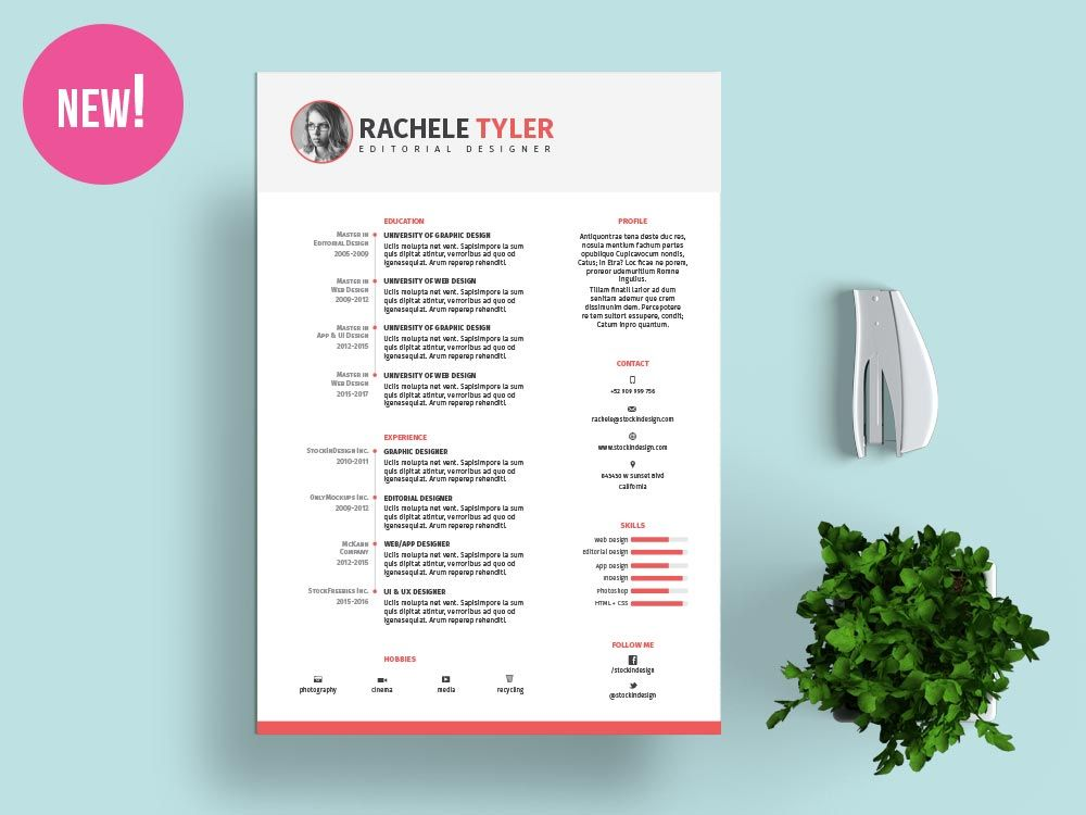 FREE InDesign Resume Template   curriculum   Pinterest   Template     FREE InDesign Resume Template