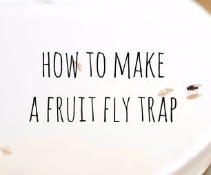 Easy Fruit Fly Trap