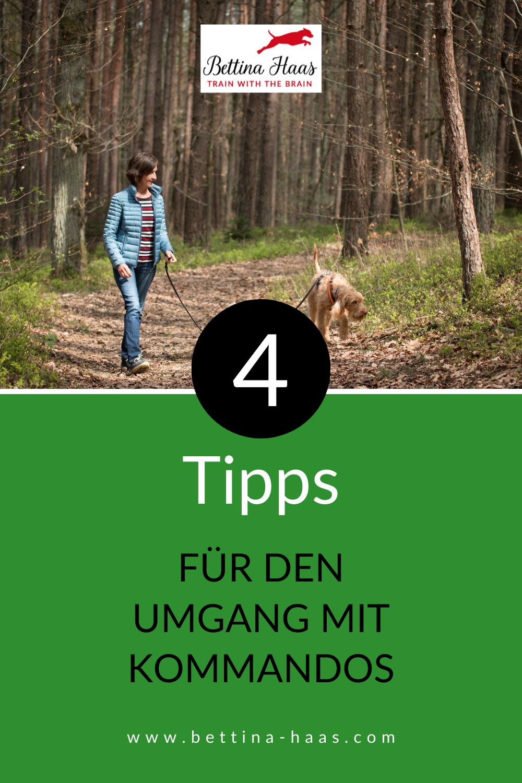 4 Tipps Mit Denen Du Fehler Bei Kommandos Vermeidest In 2020 Hundchen Training Hundetraining Hundchen Ubung