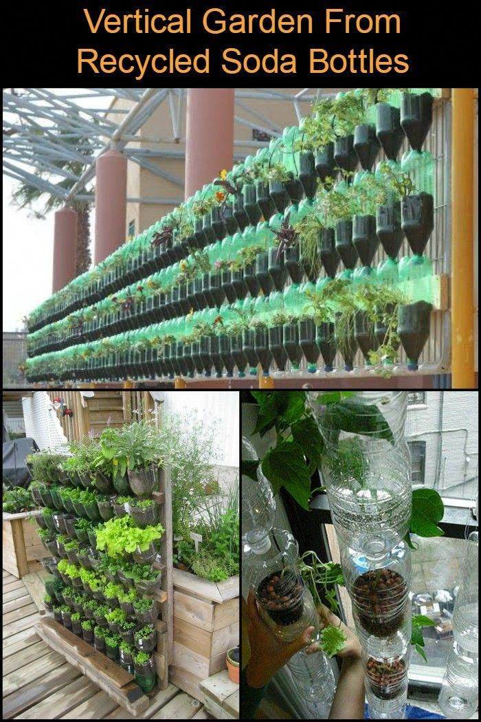 Grow Your Own Kitchen Garden by Making a Vertical Planter