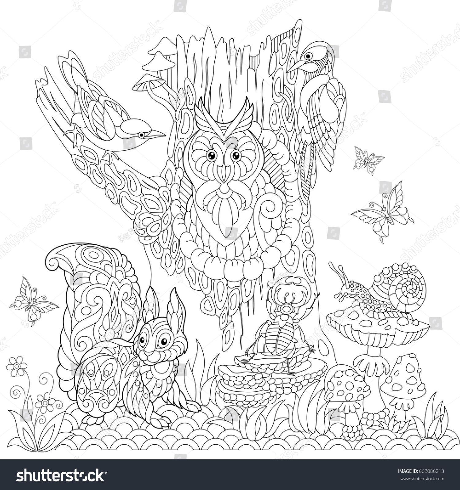 Coloring Book Page Of Forest Landscape Owl Cuckoo Bird Woodpecker Squirrel Snail Stag Beetle Butterflies Fre Coloriage Coloriage Hibou Livre De Couleur