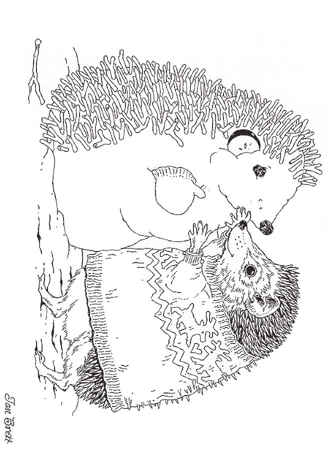Hedge Hogs Coloring Pages Hedgehog Drawing Coloring Books