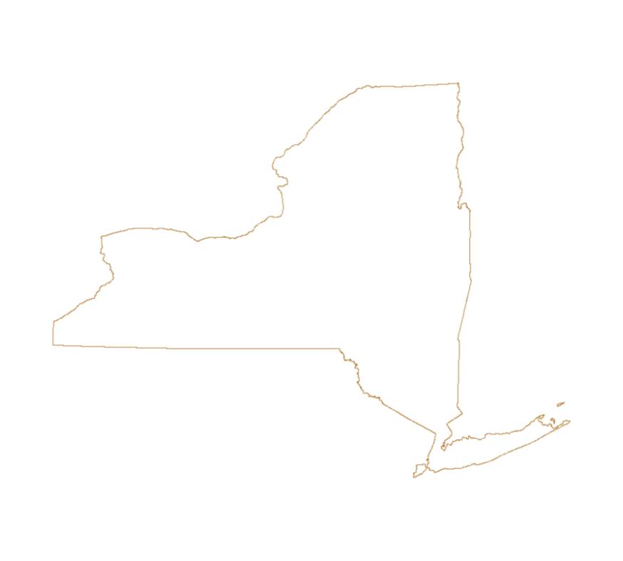 New York Outline Vector 1024x1024 Png 874 787 Pixels Outline State Outline New York