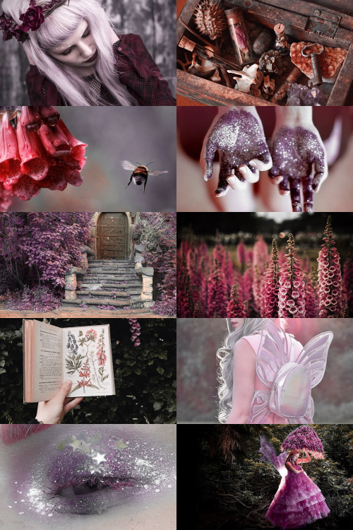 "Flower Fairies ; Foxglove Aesthetic"" ""Foxglove, Foxglove, What do you see now?"" The soft summer moonlight On bracken, grass, and bought; And all the little fairies dancing As only they know how."" - Cicely Mary Barker """