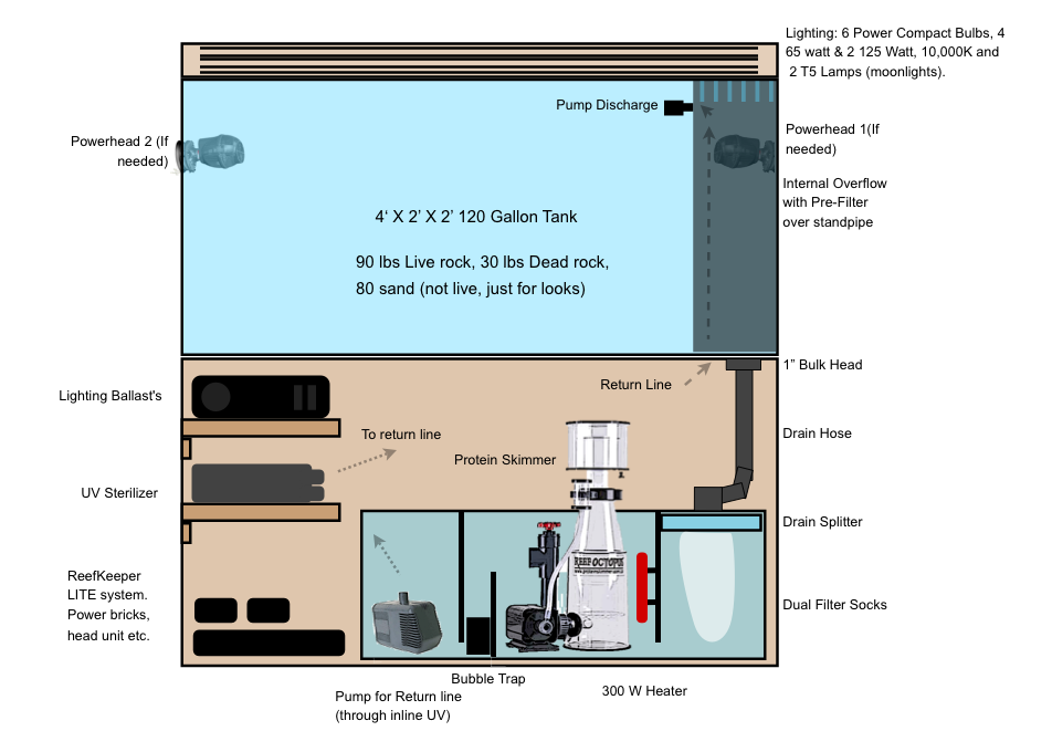 Marine Tank Sump System | Saltwater Sump Setup | Fishtank ...