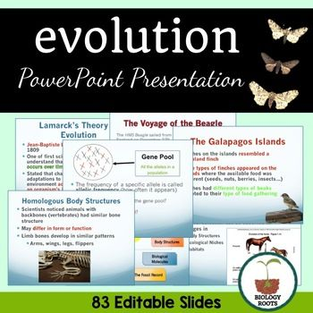 Evolution And Natural Selection Powerpoint Student Notes Included