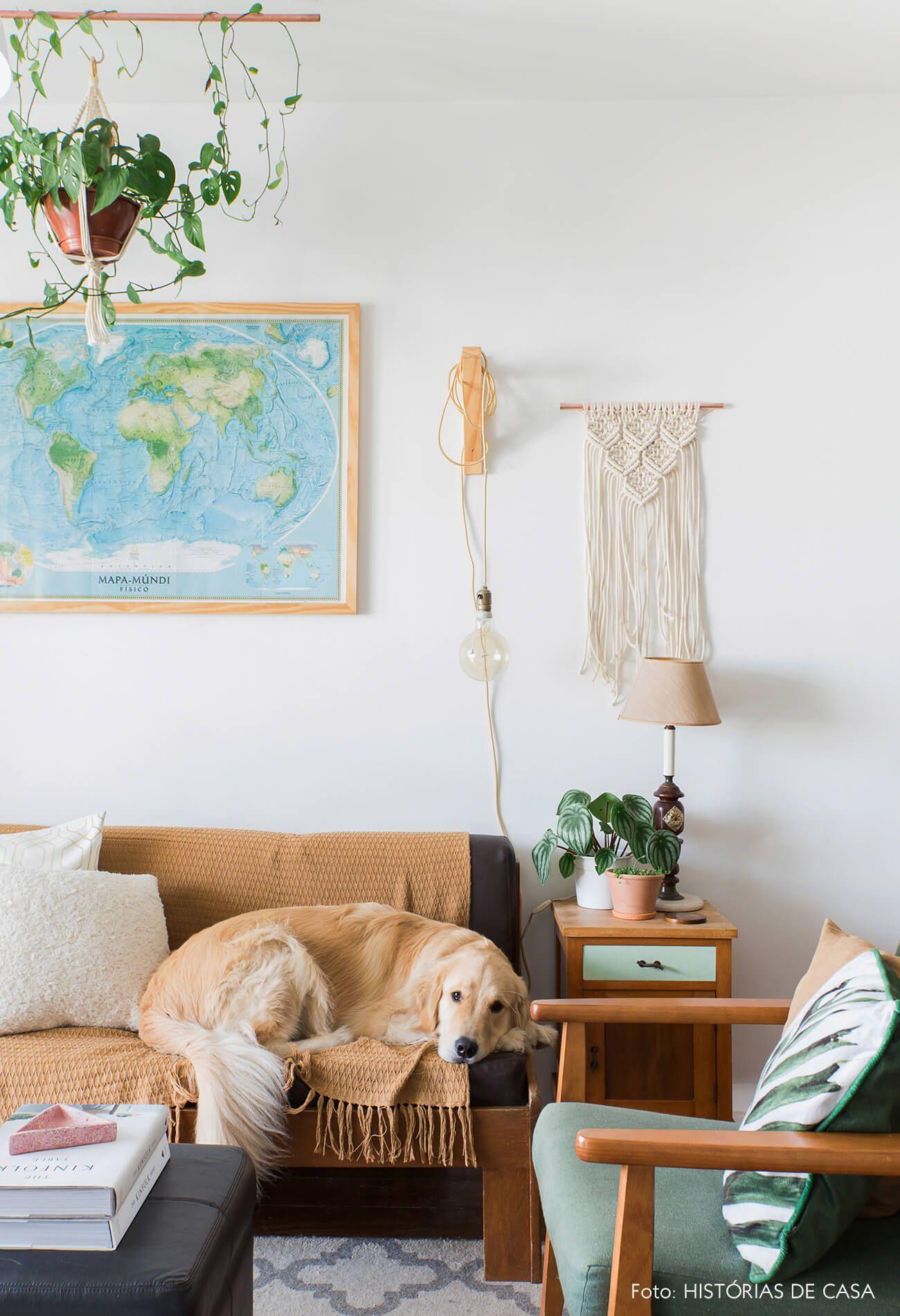 Apartamento Pequeno E Cheio De Plantas Com Imagens